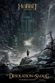 The Hobbit: The Desolation of Smaug 2013 EXTENDED