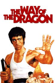 The Way of the Dragon 1972 REMASTERED