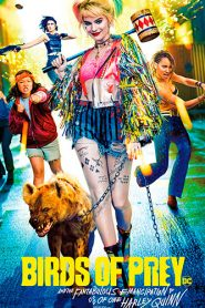 Birds of Prey: And the Fantabulous Emancipation of One Harley Quinn 2020