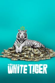 The White Tiger 2021